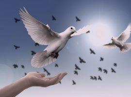 duhovni-menadzment