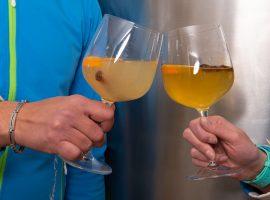 soft-drinks-tonici-pivo
