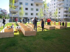 urban-gardening-beč