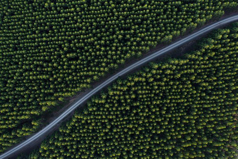 biogorivo-ina