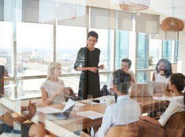 startup-lideri