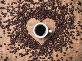 besplatna-kava